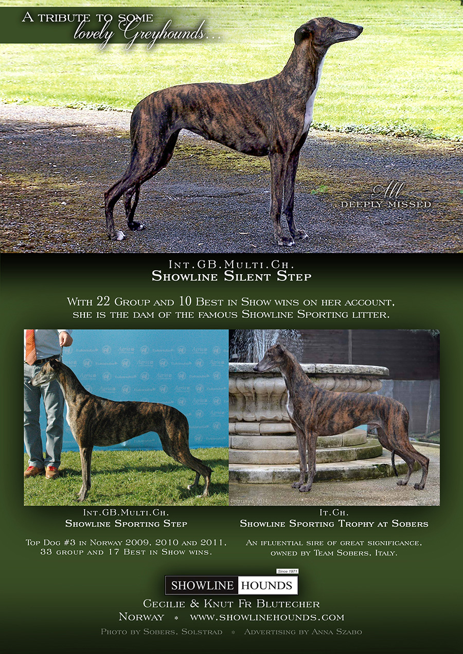 Greyhound Handbook ad 2014 2016